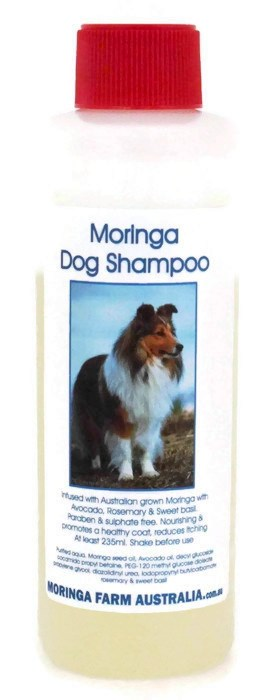 Moringa DOG (Pet) CONCENTRATED SHAMPOO 235ml